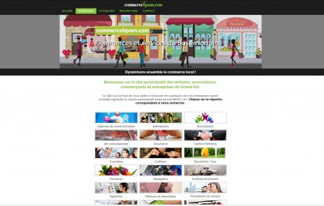 Site vitrine (Adobe Muse)